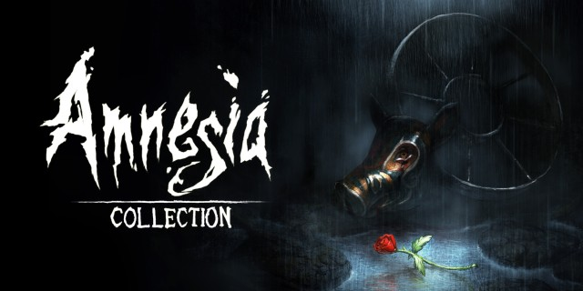 Image de Amnesia: Collection