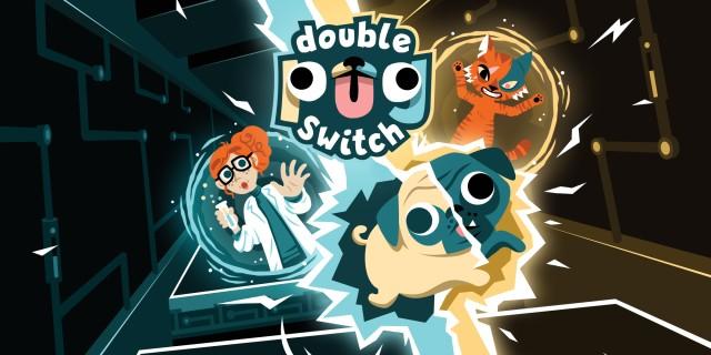 Image de Double Pug Switch