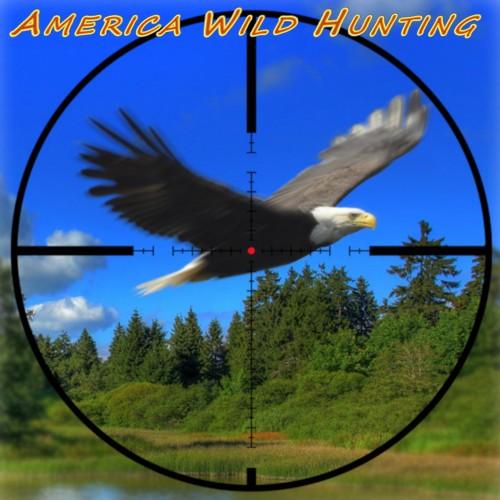 America Wild Hunting switch box art