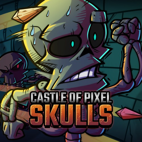 Castle Of Pixel Skulls switch box art