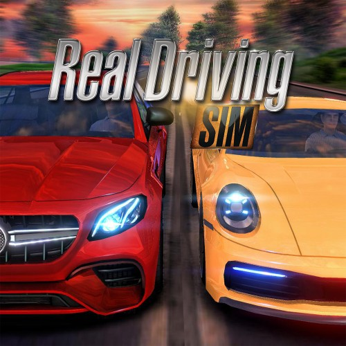 Real Driving Sim switch box art