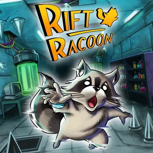 Rift Racoon switch box art